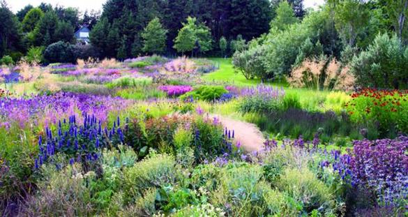 Jardín en West Cork. Paisajista Piet Oudolf