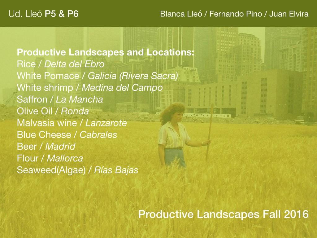 Productive Landscapes.001